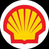 Shell yorumları