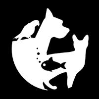 Evcil İlanlar yorumları