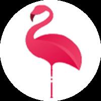 Moda Flamingo yorumları
