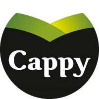 Cappy yorumları