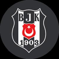 Beşiktaş Jimnastik Kulubü yorumları