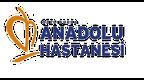 Anadolu Hastanesi (Bursa) yorumları
