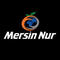 Mersin Nur Turizm yorumları