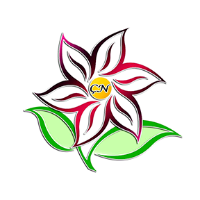 Çiçek Noktası yorumları