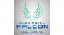 Club Hotel Falcon Antalya yorumları
