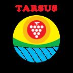 Tarsus Belediyesi yorumları