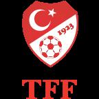 Türkiye Futbol Federasyonu yorumları