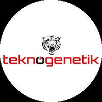 Teknogenetik yorumları